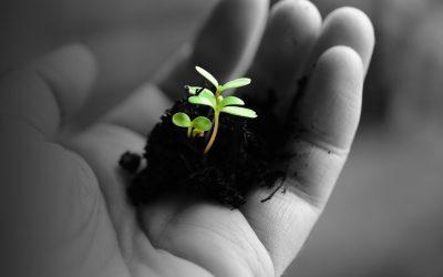 Groei Totaal Plan voor de maakindustrie